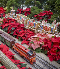 Olbrich's Holiday Express:  Model Train and Flower Show