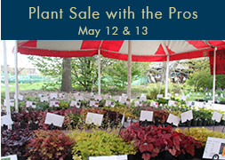Plant Sale with the Pros