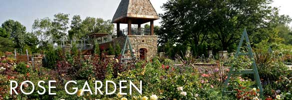 rose garden featuring the rose tower - Pictures Of Rose Gardens