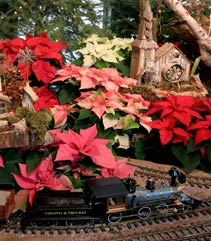 Holiday Express train display